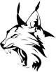 Lince plus icon